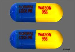 Blue And Yellow Capsule Fiorinal Codeine Watson 956 Fiorinal Codeine Watson 956 - Fiorinal with Codeine Capsule