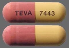 Pink And Yellow Capsule Teva 7443 - Fluvastatin Sodium 40mg Capsule